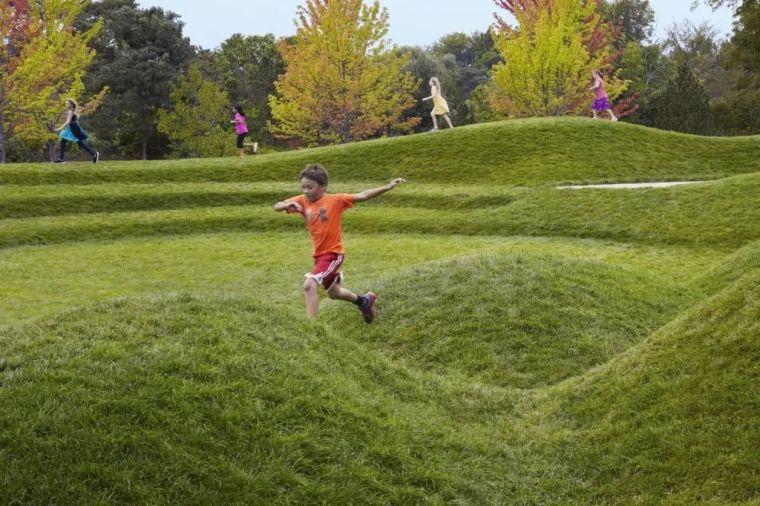 你的植物配置再厉害,又认识几种草坪草呢?_41