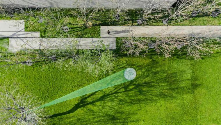 你的植物配置再厉害,又认识几种草坪草呢?_64