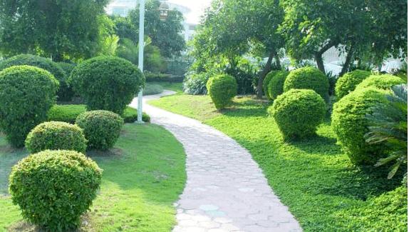 园林绿化工程量计算方法,你了解吗?_2