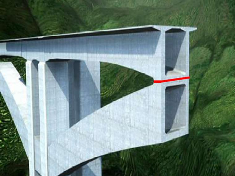 空腹式连续刚构桥设计与施工(208页)_4