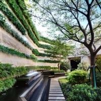 景观植物_园林景观图片