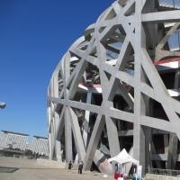 钢结构工程_建筑施工图片