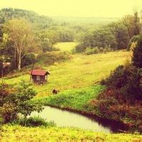 环保人家园_路桥市政图片