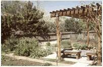 美国景观设计师协会(ASLA )2005年各奖项揭晓(1)