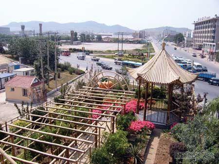 """盼""""空中花园""""早落户滨城屋顶"""
