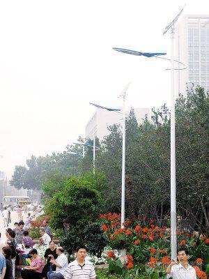 天津长虹公园装太阳能路灯 白天晒太阳晚上自动照明