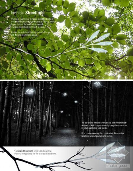 可持续发展环保概念:从无形路灯到垂直农场