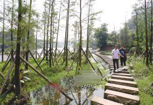 渝首个国家级湿地公园开园 彩云湖请你去露营野餐