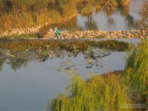 白浪绿洲湿地公园:江北最大的城市生态湿地
