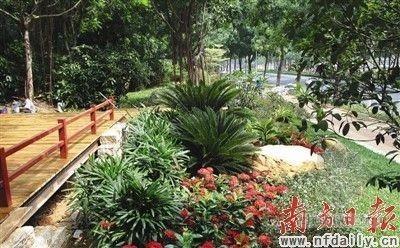 珠江公园成为都市生活的慢行道