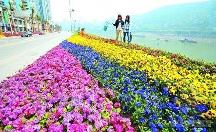 重庆:今明两年建25公园