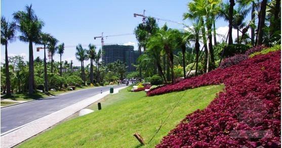 碧桂园•十里银滩园林景观震撼全国