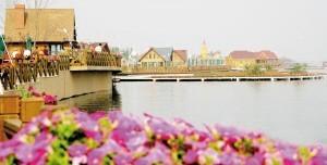 天津七里海湿地成功跻身国家级AAA景区