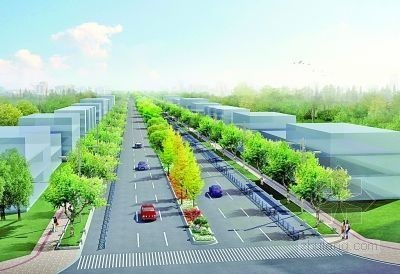南京江宁文靖路变身绿色景观大道