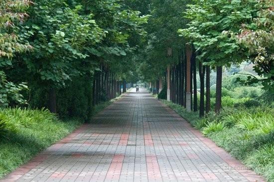 洛阳积极改善城市生态环境 建设宜居山水城市