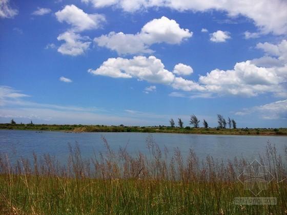 海口打造带状湿地生态区 将建4个湿地森林公园