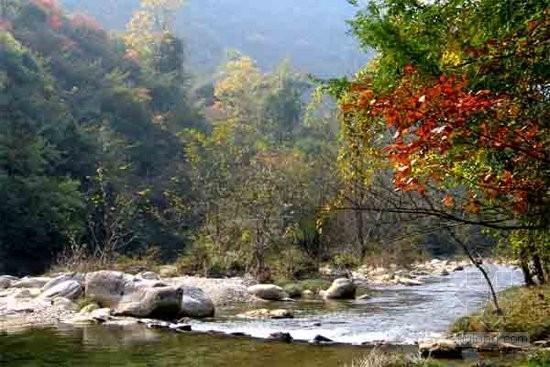 山东高密市综合治理五龙河 打造生态湿地公园