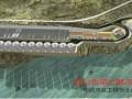 四川古蔺二郎污水处理工程