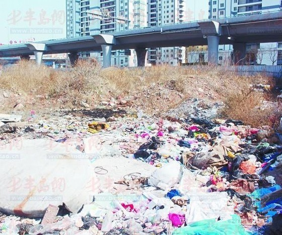 """闲置土地隐患多 南京路1号地块成""""天价水塘"""""""