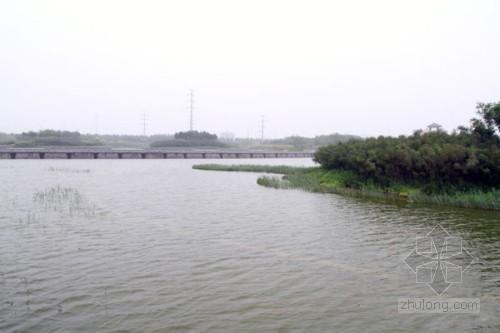 天津生态湿地公园 人工湿地技术让污水更清