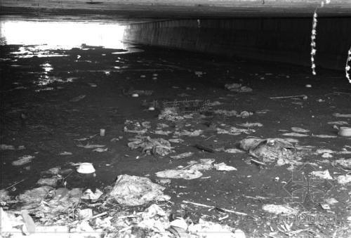 """温州1880万治2.3公里河道""""黄金水道""""污染依旧"""