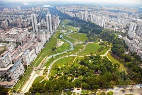 """新加坡生态公园 混凝土水渠改建成""""自然河道"""""""
