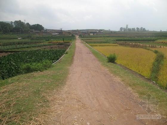 水利基础设施薄弱 农田无水可用