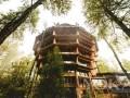 以树为屋 智利奢华绿色低碳酒店