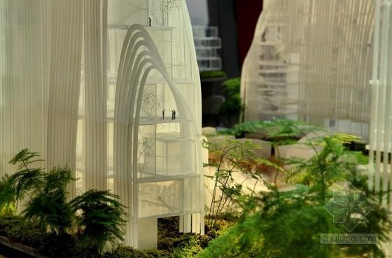 马岩松:对未来中国自然化城市的设想