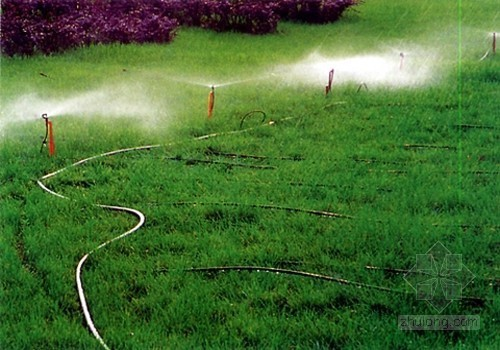李克强:今年拟700亿支持节水灌溉等项目