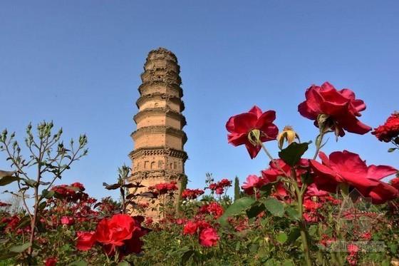 洛阳斜塔斜而不倒 早于比萨斜塔两百年