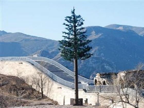 八达岭长城种12棵仿真树 新型防雷设施