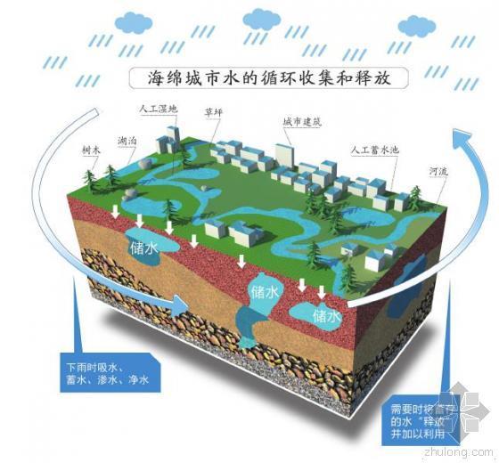 成都天府新区规划地上海绵 吸水蓄水避免城市内涝