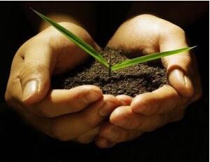 """土壤修复:怎样分享万亿""""大蛋糕"""""""
