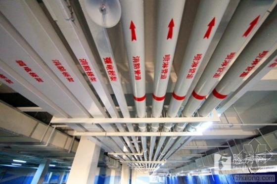 BIM技术应用于山东滕州市地下车库管网优化建设