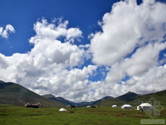"""西藏规划""""两江四河""""造林绿化工程 投资300亿元"""