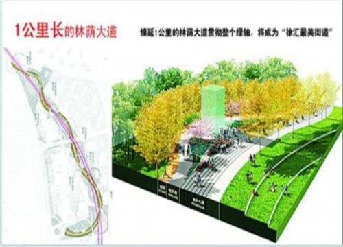 徐汇中城大型公共绿地示意图