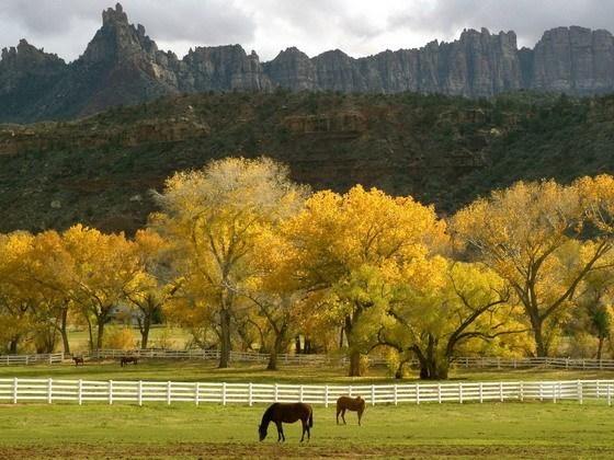 全美十大最美国家公园出炉 黄石公园居首