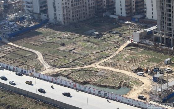 郑州城中村拆迁3年后成菜地 地价近千万元1亩