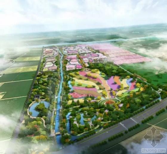 上海最大花海公园即将开放!全国最浪漫的地方约吗?