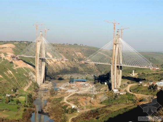"""中国造""""非洲世界最大梦幻斜拉桥"""" 网友吐槽一片"""