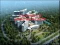光谷同济医院工程监理例会钢结构汇报材料