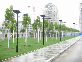 [精品施组]某市政路灯工程安装施工组织设计