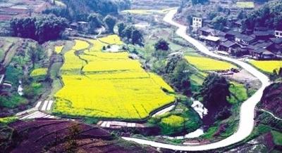 转:[重庆]渝北区今年新改建农村公路160公里