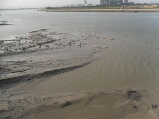倒滤层和二片石垫层对地基基础的影响