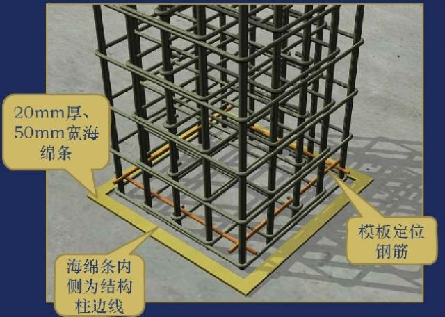 柱、墙模板支设三维效果图解说
