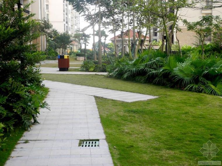 居住区公园园路铺装设计