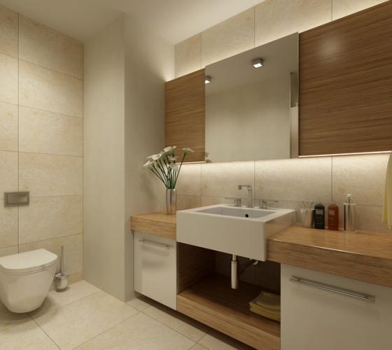 卫浴风水布置技巧 浴室风水盆栽的力量