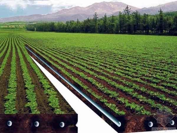 农田水利工程节水灌溉技术分析