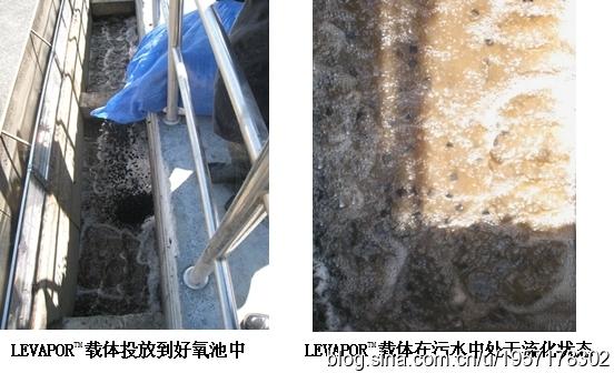[案例]黑龙江宁安污水处理厂提标扩容改造方案